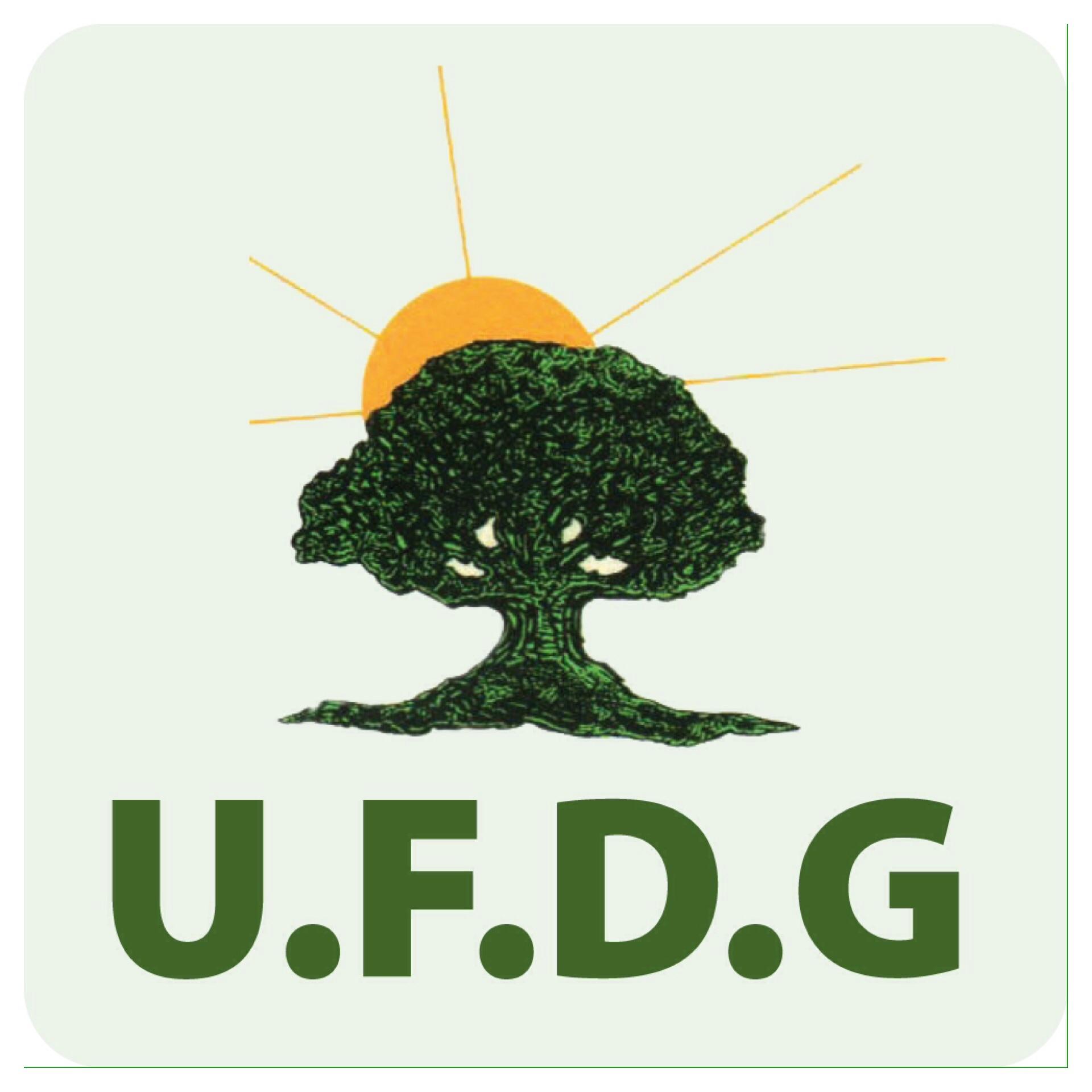 Photo logo de L'UFDG