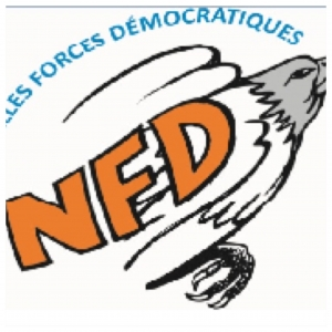 Logo NFd