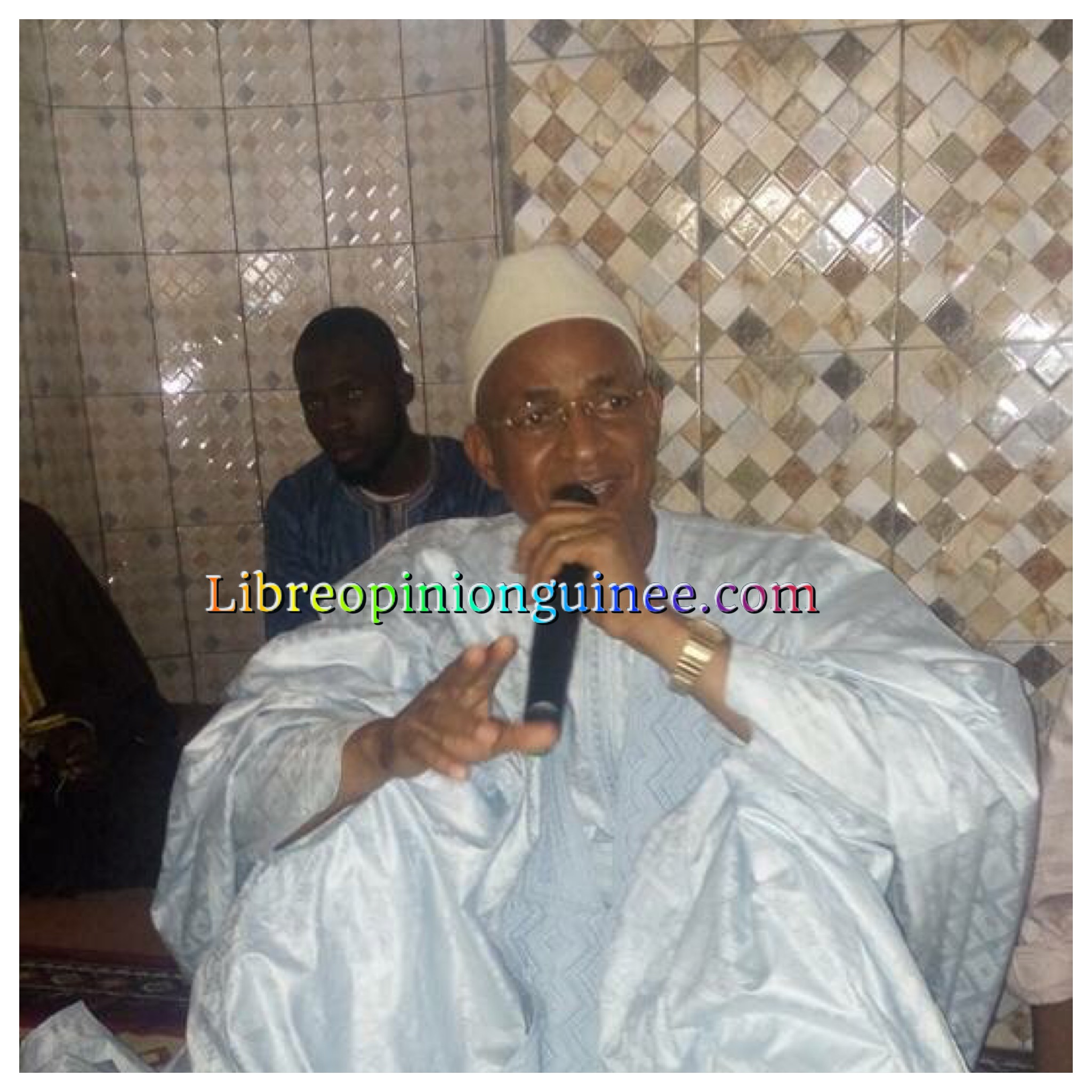 Cellou Dalein Diallo ufdg Guinée