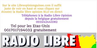 Logo Radio Libre Opinion RLO