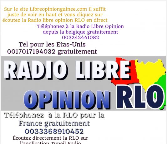 Logo Radio Libre Opinion RLO