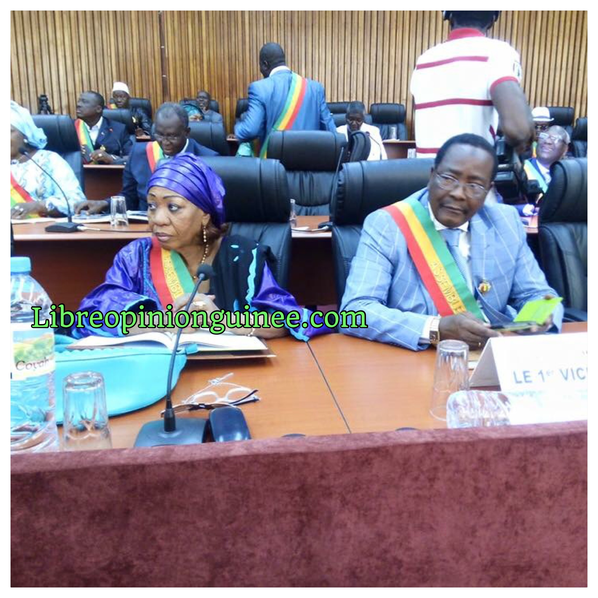 Assemblée nationale Guinée RPG