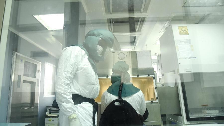 COVID-19 : Surfaces contaminées et aérosols, quelle durée de survie du virus ?
